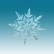 fiocco di neve_2